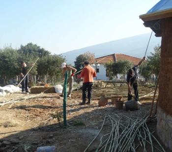 Επεξεργασία καλαμιών για την επένδυση της οροφής και της στέγης