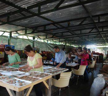 Εργαστήριο: Η Τέχνη στη συντήρηση Αρχαιοτήτων
